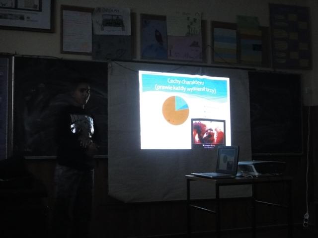 Mewa - prezentacja prac